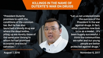 Harry Roque quotes on killings