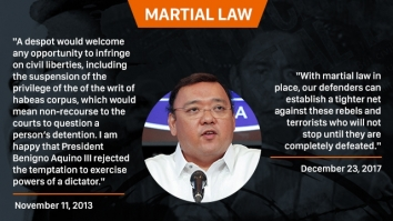 Harry Roque quotes on martial law